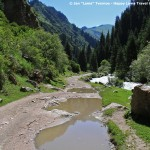 travelling-through-Altyn-Arashan-gorge-kyrgyzstan